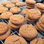 My Favorite Chewy Gingersnaps