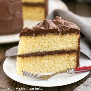Can I Add Cocoa Powder To Yellow Cake Mix