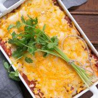 Chicken Enchiladas | Spicy, cheesy chicken enchiladas