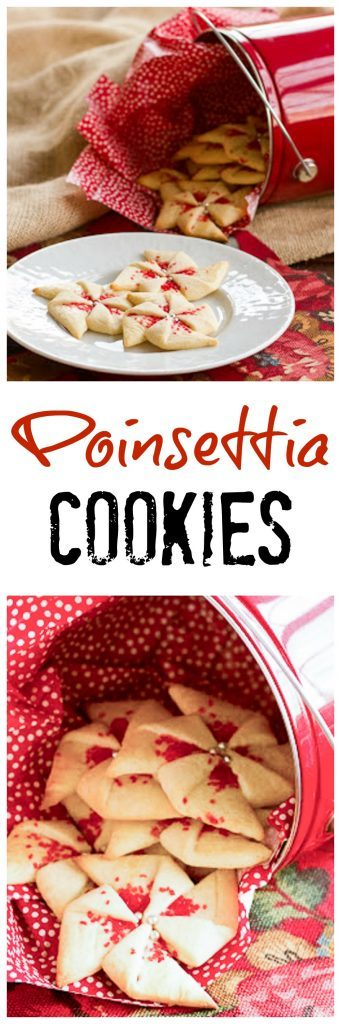 photo collage - Poinsettia Cookies on a white serving plate with a red bucket full of poinsettia cookies with red and white tissue paper.