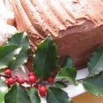 a Christmas Yule Log Cake