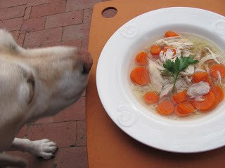 Scrumptious Chicken Soup with Matzoh Balls AKA Jewish Penicillin!