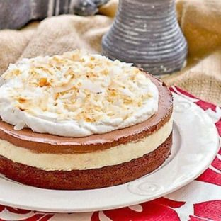 Coconut Brownie Cake on a white plate over a red and white napkin