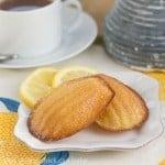 Lemon Madeleines #TuesdayswithDorie