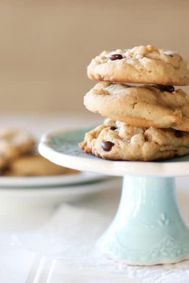 Peanut Butter Chocolate Cookies | Picnic Recipes