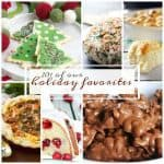 20+ Best Holiday Recipes