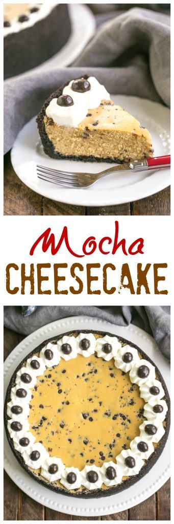 Mocha Cheesecake with Chocolate Chips | Luscious coffee flavored cheesecake speckled with mini chocolate chips!