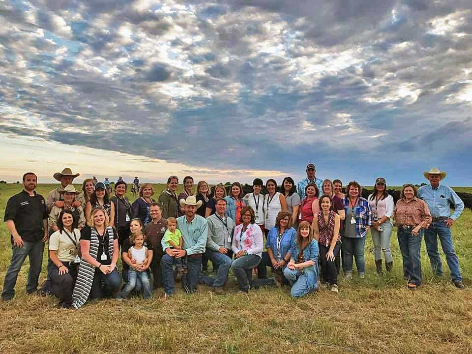 Group shot of bloggers in cattle country