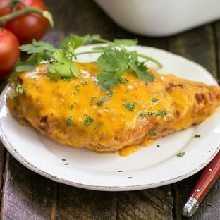 Easy Salsa Chicken - a simple recipe that will be a hit with your family!